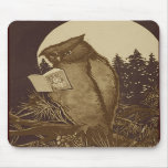 Owl  Reading by Moonlight Mouse Pads