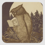Owl  Reading by Moonlight Square Stickers