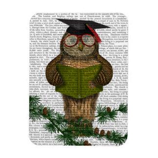 Owl Reading On Branch Magnet