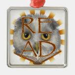 Owl Reading Teacher Christmas Ornament