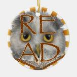Owl Reading Teacher Christmas Ornaments