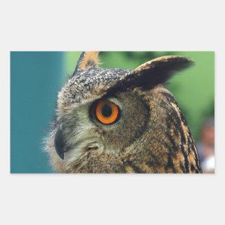 Owl Rectangular Sticker