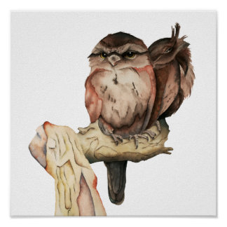 Owl Siblings Watercolor Portrait Poster