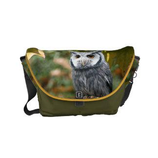Owl Small Messenger Bag