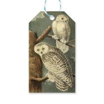 Owl Snowy Audubon Bird Art Illustration Birding Gift Tags