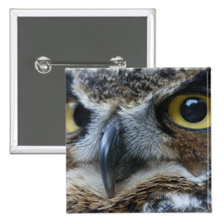 Owl Square Pin
