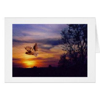 Owl Sunset Photo Greeting Card