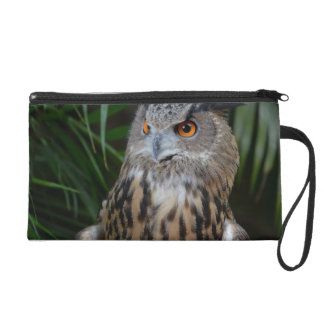 owl surprised right bird wristlet clutches