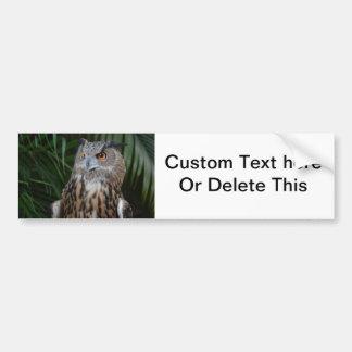 owl surprised right bird bumper sticker