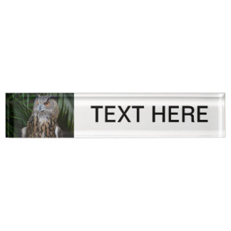 owl surprised right bird desk name plate