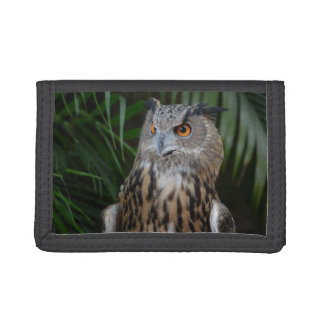 owl surprised right bird trifold wallets