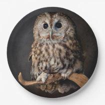 Owl Symbol of wisdom Paper Plate
