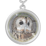 Owl - Symbol of wisdom Silver Plated Necklace