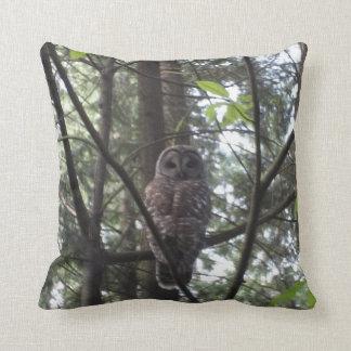 """Owl Throw Pillow 20"""" X 20"""""""