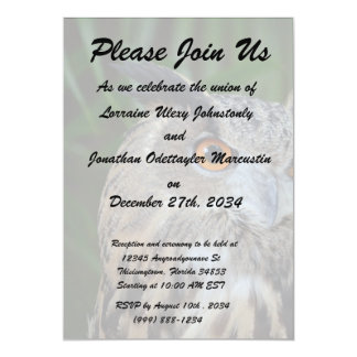owl turning to the right head view bird 5x7 paper invitation card