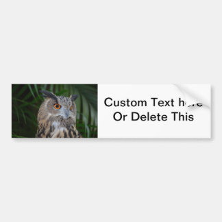 owl turning to the right head view bird bumper sticker