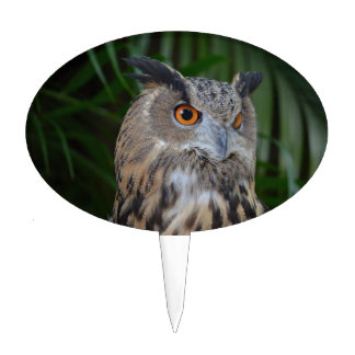 owl turning to the right head view bird cake picks