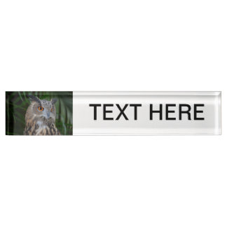 owl turning to the right head view desk name plate