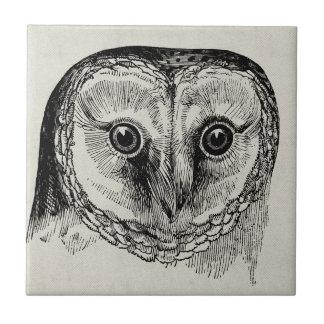 Owl Vintage Tile