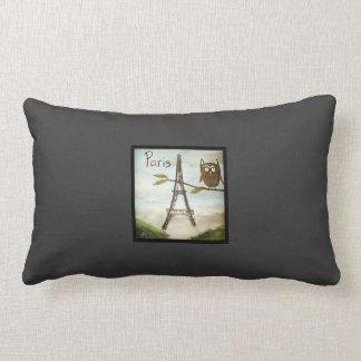 Owl Visits Paris, Part Deux- the Lumbar Support! Lumbar Pillow
