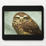Owl Watercolor Mousepad