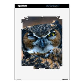 Owl Wink iPad 2 Decals