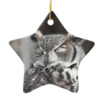 Owl with eyes closed sleeping during the day ceramic ornament