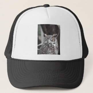 Owl with eyes closed sleeping during the day trucker hat