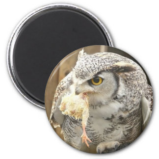 Owl with Prey 2 Inch Round Magnet