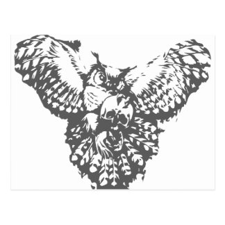 Owl With Skull Postcard