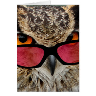 owl with spectacles funny hilarious card