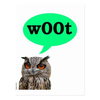 Owl Woot Postcard