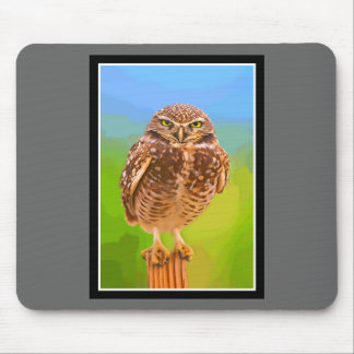 Owl - You Lookin' at Me? Mouse Pad