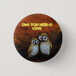 Owl You Need is Love Pin