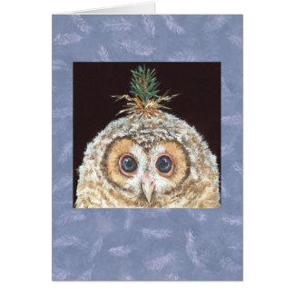 Owlet con la tarjeta del gorra del pino