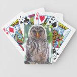 Owlet de risa baraja de cartas