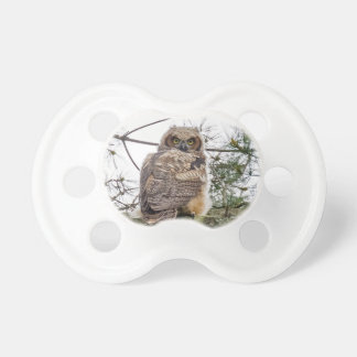 Owlet On A Pine Branch BooginHead Pacifier