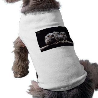 Owlet Trio Pet Tee Shirt
