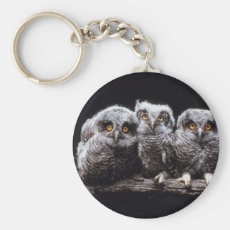 Owlet Trio Basic Round Button Keychain