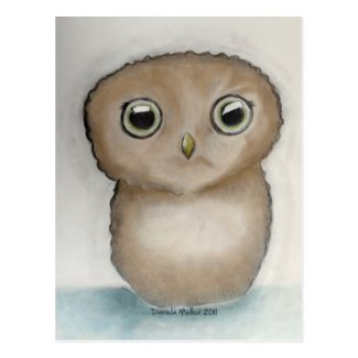 Owlie Postcard