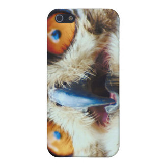 Owling Around Cover For iPhone 5/5S