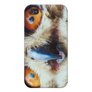 Owling Around iPhone 4/4S Covers