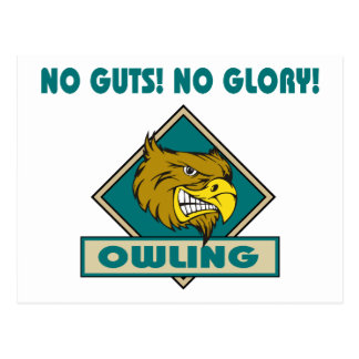 Owling No Guts! No Glory! Gift Postcard