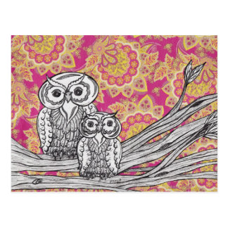 Owls 36 Postcards