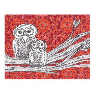 Owls 41 Postcard