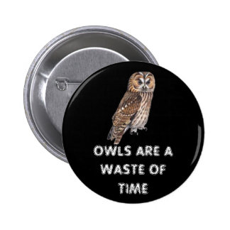 owls are a waste of time pinback button