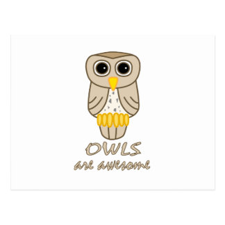 Owls are Awesome Postcard