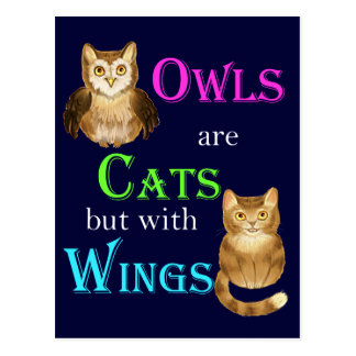 Owls are cats with wings postcard