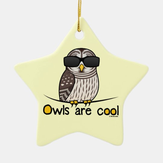 Owls are cool ceramic ornament
