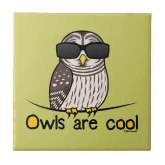 Owls are cool ceramic tile